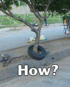 How???  For Funny Jokes, please go to:  http://www.its-hilarious.com/ http://itunes.apple.com/us/app/funny-hilarious-jokes/id492166165?ls=1=8