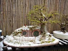 Bonsai with house in winter