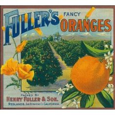 Redlands San Bernardino County Ski Orange Citrus Fruit Crate Label Art Print