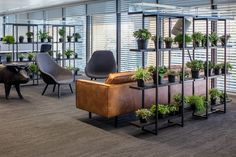 Beautiful Office Plants Without the Worry – Modern Home Office Design Office Space Design, Workplace Design, Office Interior Design, Home Office Decor, Office Interiors, Office Designs, Corporate Office Decor, Office Lounge, Open Office