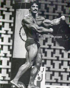 Mike Mentzer. 1978 #GoldenAgeofBodybuilding #bodybuilding #triceps #biceps #muscle #bodybuildingmotivation #goldenera #goldenage #workout… Aesthetics Bodybuilding, Bodybuilding Motivation, Weight Training, Biceps, Golden Age, Physique, Muscle, Workout, Instagram