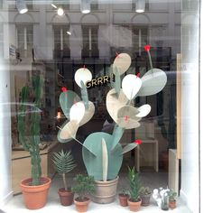 retail window display cactus - Google Search