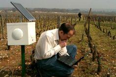 Ces paysans français soignent leurs champs en musique