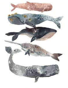Michelle Morin - Five Whales Stacked