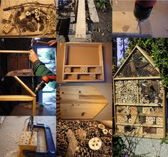 Naturaleza, rastreo, rastros, ornitología, huellas de animales