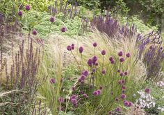 Perenna gräs ger rofyllda rabatter