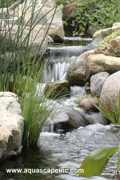 Gorgeous waterfall shows great use of rock and plant placement in a suburban backyard