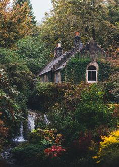 Wohnen im Grünen My cottage will be located right in the middle of the woods. The woods creates a se Old Cottage, Cottage In The Woods, Garden Cottage, Witch Cottage, Cottage House, Backyard Cottage, Cottage Pie, Ivy House, Cottage Ideas
