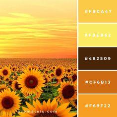 Colour Palette – Ave Mateiu Colour Pallet: For Fashion Designs Orange Color Palettes, Pantone Colour Palettes, Color Schemes Colour Palettes, Fall Color Palette, Colour Pallette, Color Palate, Pantone Color, Color Combos, Orange Color Schemes