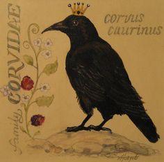 Corvus Caurinus Painting by Victoria Heryet - Corvus Caurinus Fine Art Prints and Posters for Sale