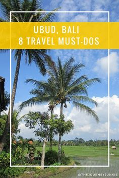 Ubud, Bali - The Must-Dos! Pin now, read later.