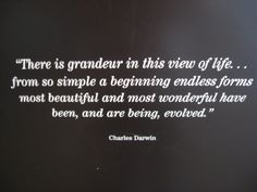 A beautiful quote from Darwin that I found at the Denver Museum of Nature and Science