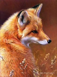Fox & the colors game Joni Johnson-Godsy ~ Art. Beautiful Creatures, Animals Beautiful, Animals And Pets, Cute Animals, Vida Animal, Fox Drawing, Fox Art, Cute Fox, Tier Fotos