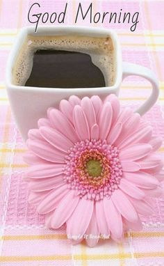 ☜♥☞ café - Coffee and a pink flower Good Morning Greetings, Good Morning Wishes, Good Morning Good Night, Good Afternoon, I Love Coffee, Coffee Art, My Coffee, Brown Coffee, Coffee Shops