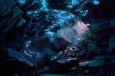 Glowworm Caving Adventure Tour in Waitomo