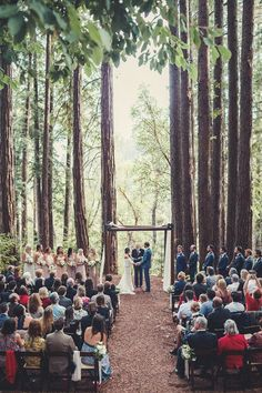 With towering redwoods creating a natural cathedral this romantic boho chic forest wedding and reception you will be rethinking your venue wish list. Cheap Wedding Venues, Wedding Locations, Wedding Themes, Wedding Styles, Wedding Programs, Budget Wedding, Wedding Invitations, Redwood Wedding, Yosemite Wedding