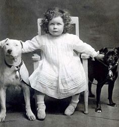 This determined little girl was probably photographed in the late 1800s to early 1900s with her possible Bull Terrier and Staffordshire Bull Terrier.