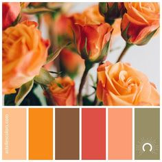 "97 харесвания, 2 коментара – @astellescolors в Instagram: ""Color inspiration [ proof of love ] • Melinda Pack @melindapack - thank you for sharing this…"""