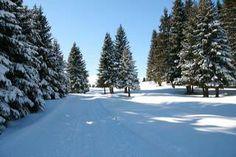 Winter am Vigiljoch - inverno a Monte San Vigilio