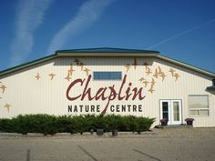 Chaplin, SK Nature Center, Beautiful Places, Coast, Canada, Neon Signs, Outdoor Decor, Pictures, Photos, Grimm
