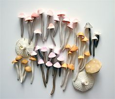 Candy Sweet Colorful Wild Mushrooms / A Collection of 42 Freshly Harvested Candy Mushrooms via Etsy diy candy stuff Wild Mushrooms, Stuffed Mushrooms, Edible Mushrooms, Paperclay, Color Inspiration, Bunt, Wonderland, Artsy, Texture