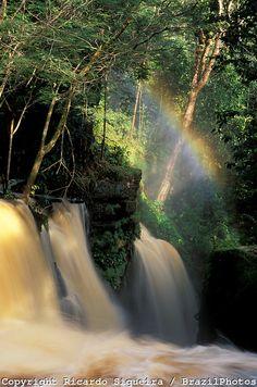 Santuário Falls in the municipality of Presidente Figueiredo, Amazon rainforest, Amazonas state, Brazil.