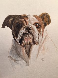 Let me create a PET PORTRAIT for you! Send me a photo of your pet, and Ill create YOUR very own Pet portrait. Created by hand! Pet Portraits, Your Pet, How To Draw Hands, Pets, Create, Painting, Animals, Animaux, Painting Art