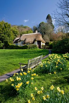 Pretty thatched cottage in Selworthy, Exmoor