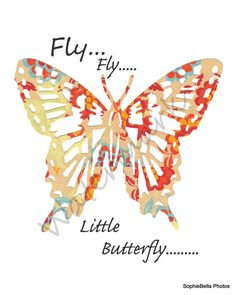 Fly..fly..little butterfly...