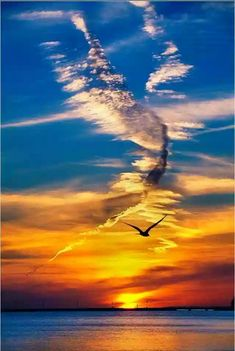 All in Flight Amazing Sunsets, Amazing Nature, Beautiful Sunset, Beautiful World, Sky And Clouds, Sunset Photography, Nature Pictures, Belle Photo, Pretty Pictures