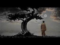 Atrair Energias Positivas, Sabedoria, Eliminar ansiedade, Equilibrar os ...