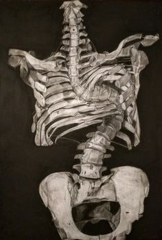 "Charcoal Drawings ""Scoliosis"" charcoal drawing x Anatomy Art, Anatomy Drawing, Human Painting, Ap Studio Art, Funky Art, A Level Art, Ap Art, Amazing Drawings, Skull Art"