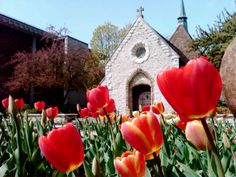 Marquette University's Joan of Arc Chapel in the Spring. Gotta love those tulips!