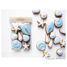 貝殻アイシングクッキー #icingcookies #アイシングクッキー #クッキー #cookies #decoratedcookies #sugarcookies #sweets