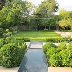 Water deficiencies in dry atmospheres are constraining home gardeners and expert landscapers to lessen the region of the garden taken up by the grass. The inconvenience is that nothing that can supplant a garden in the field in which a… Continue Reading →