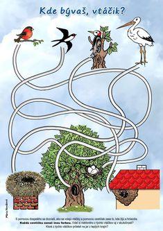Alsace, Birds, Wreaths, Decor, Visual Perceptual Activities, Games, Decoration, Door Wreaths, Bird