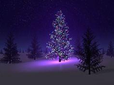 purple. Purple Christmas Tree, Christmas Tree Wallpaper, Christmas Desktop, Merry Christmas, Beautiful Christmas Trees, Christmas Scenes, Christmas Background, Xmas Tree, Winter Christmas