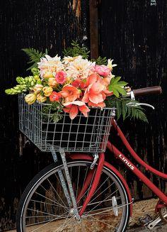 http://myhome.aftonbladet.se/inspiration/trend-stories/svenska-ingrid-gor-blommor-till-kandisar-i-new-york.html