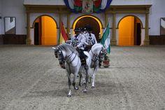 Fundacion Real Escuela Andaluza del Arte Ecuestre, Carrusel 001.jpg