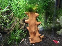 Yogi - Baum - Terracotta  - Kletterbaum für Garnelen - Ton - Deko - Aquarium