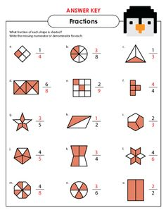 math worksheet : basic fractions practice  fractions fractions worksheets and  : Fraction Practice Worksheet