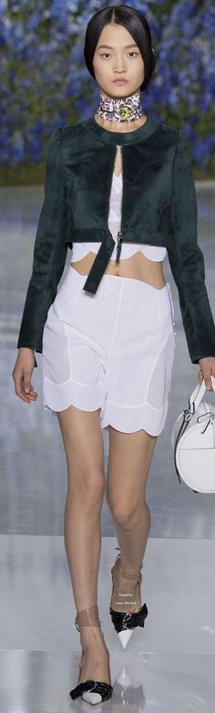 Christian Dior  Collection Spring 2016 Ready-to-Wear: