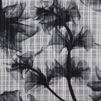 Jason Wu Black/Silver Floral Plaid Novelty Silk Chiffon 308719 A novelty fabric to say the least, here is a deluxe silk chiffon previously occupied under the name Jason Wu. Not only can you expect a riveting, smokey floral print to rest atop this stellar Designer Fabrics Online, Fabric Online, Jason Wu, Silver Tops, Black Silver, Silk Chiffon Fabric, Fashion Themes, Novelty Fabric, Mood Fabrics