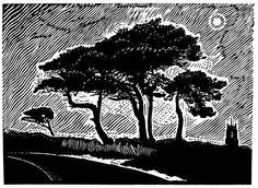 Night Trees.....James Dodds