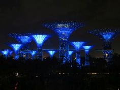Supertrees at Gardens by the Bay, Singapore Gardens By The Bay, Marina Bay Sands, Wings, Album, Building, Travel, Singapore, Asia, Travel Tips