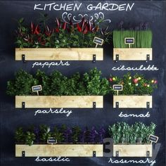 models: Other kitchen accessories - Kitchen garden Sketchup Free, Sketchup Model, Kitchen Cabinets To Ceiling, Kitchen Cabinet Design, Green Plants, Potted Plants, Layout Design, Kitchen Designs Photos, Living Room Update