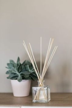 home made essential oils fragrance diffuser