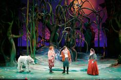 Into the Woods. Set design by Todd Ivens Scenic and Production Design.