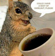 Yes, please!!☕️ #CoffeeMemes