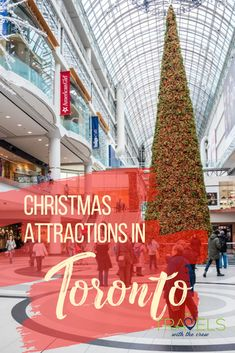 Visiting Toronto at Christmas time is a cold but exciting adventure. Visit the largest Christmas tree in Canada. Go to the largest Christmas Market in North America. Enjoy roller skating in the frosty air!